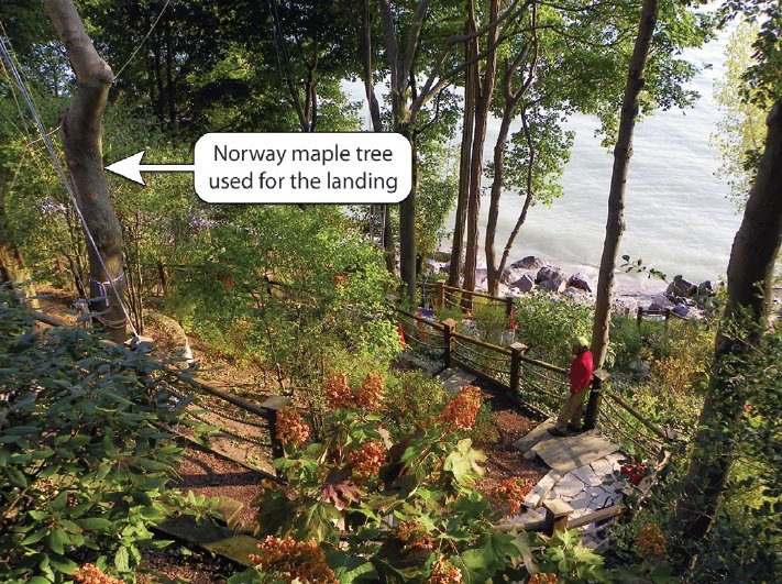 Great Article… Extremely Difficult Tree Removal Solved By